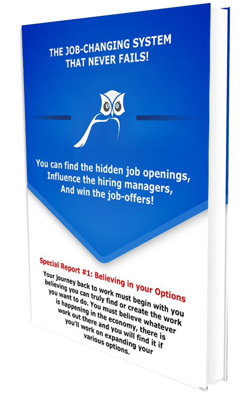 Headhunter Secrets Special Report Job Options